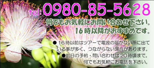top-003